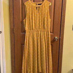 Lane Bryant Size 16 dress